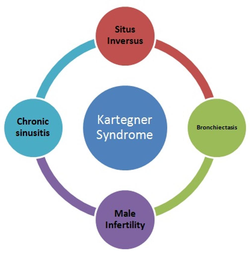 Kartagener Syndrome Multisystem Findings Radiology Case